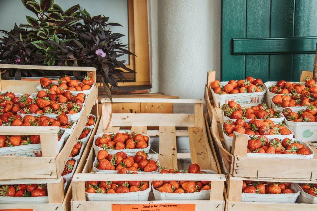 Erdbeeren im Pankratiushof in Mainz