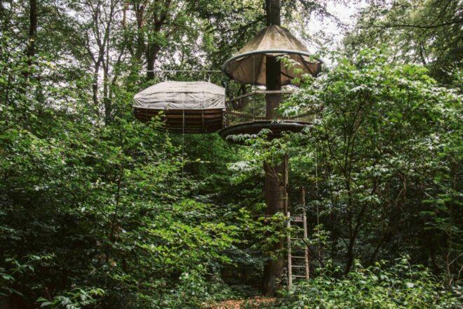 Lauschhütte Baumhaus Übernachten