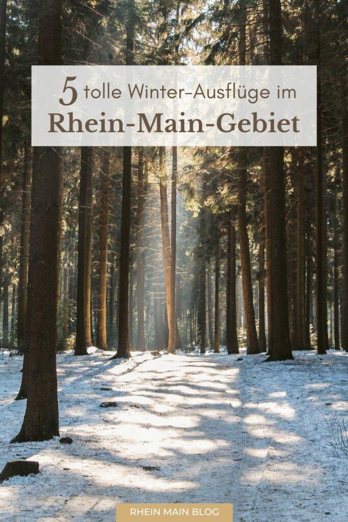 Tagesausflüge Rhein Main
