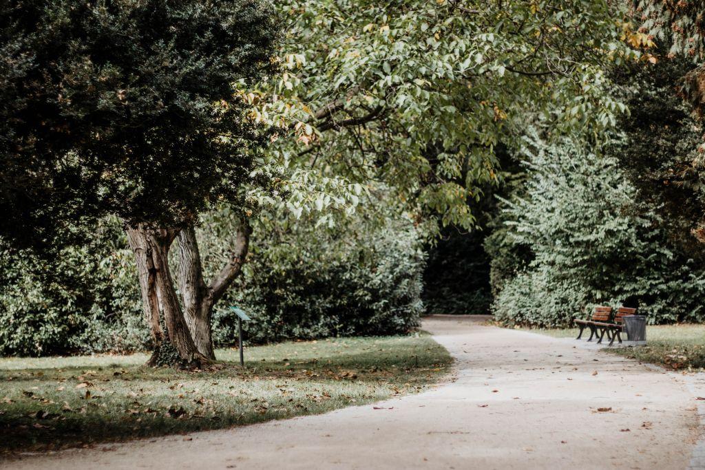 Grüneburgpark in Frankfurt am Main