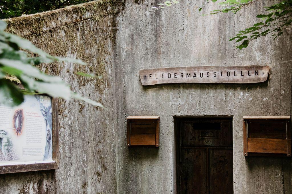 Fledermausstollen beim Walderlebnispfad auf dem Neroberg
