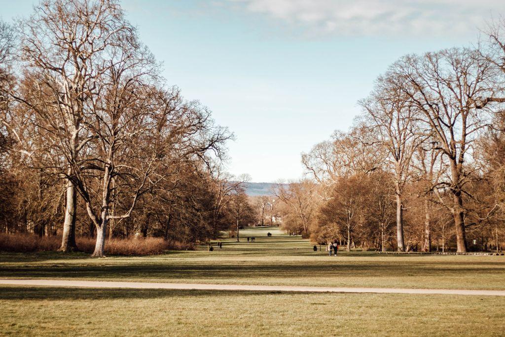 Biebricher Schloss Park