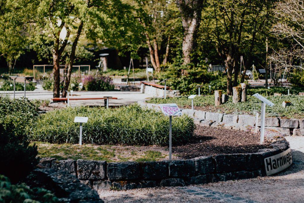 Ausflug in die Gärten Frankfurts